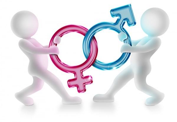 Sex, Gender & Industrial Relations Series